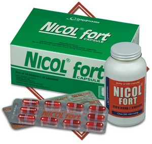NICOL FORT