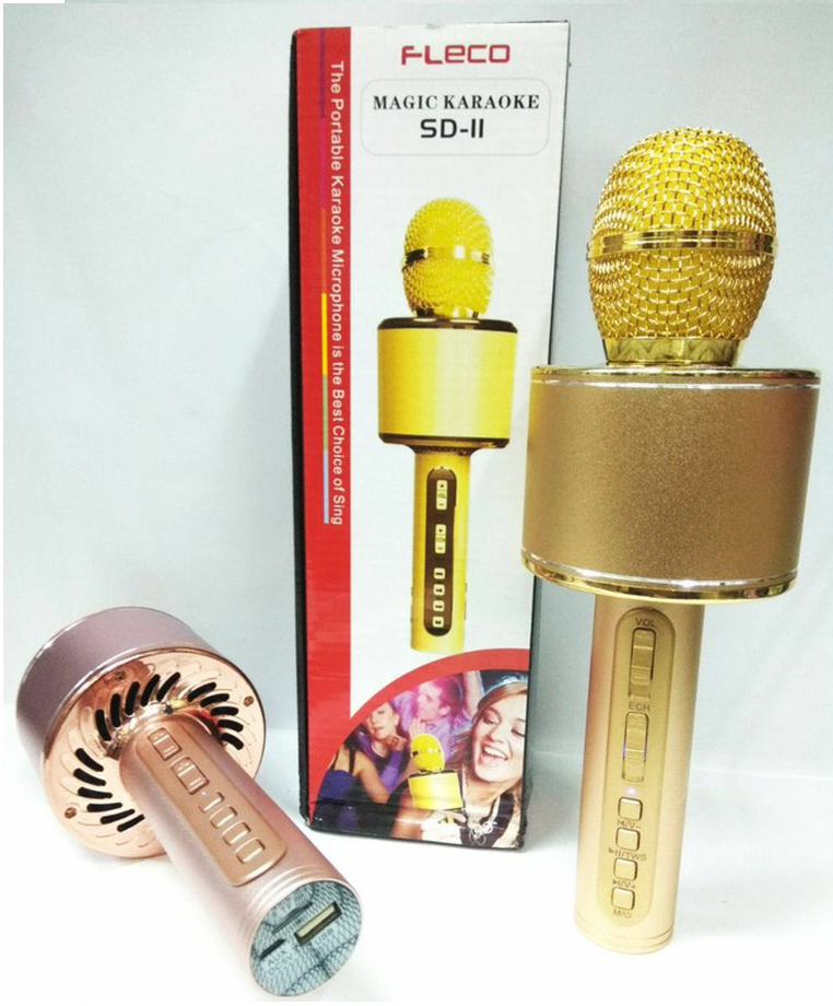 Mic hát karaoke SD 11