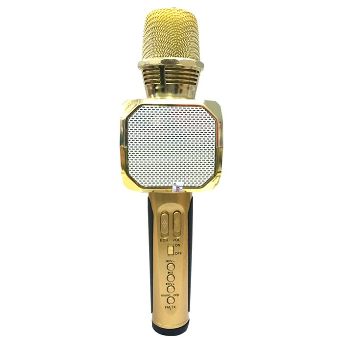 Mic hát karaoke SD 10